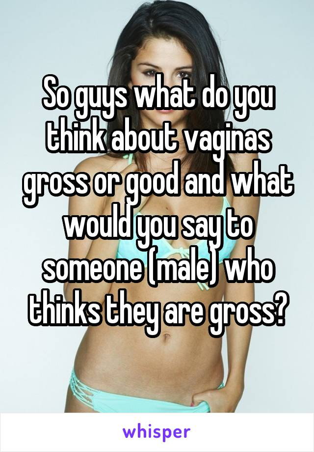 So guys what do you think about vaginas gross or good and what would you say to someone (male) who thinks they are gross?