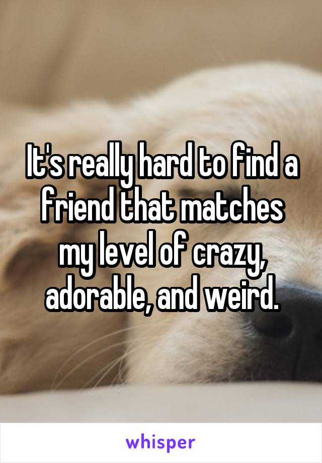 It's really hard to find a friend that matches my level of crazy, adorable, and weird.