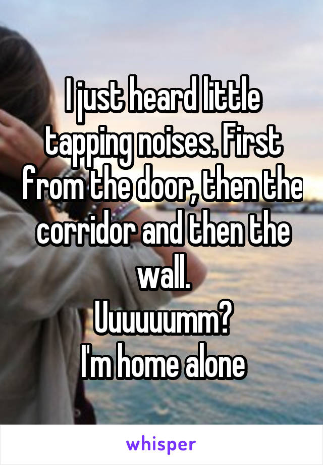 I just heard little tapping noises. First from the door, then the corridor and then the wall. Uuuuuumm? I'm home alone