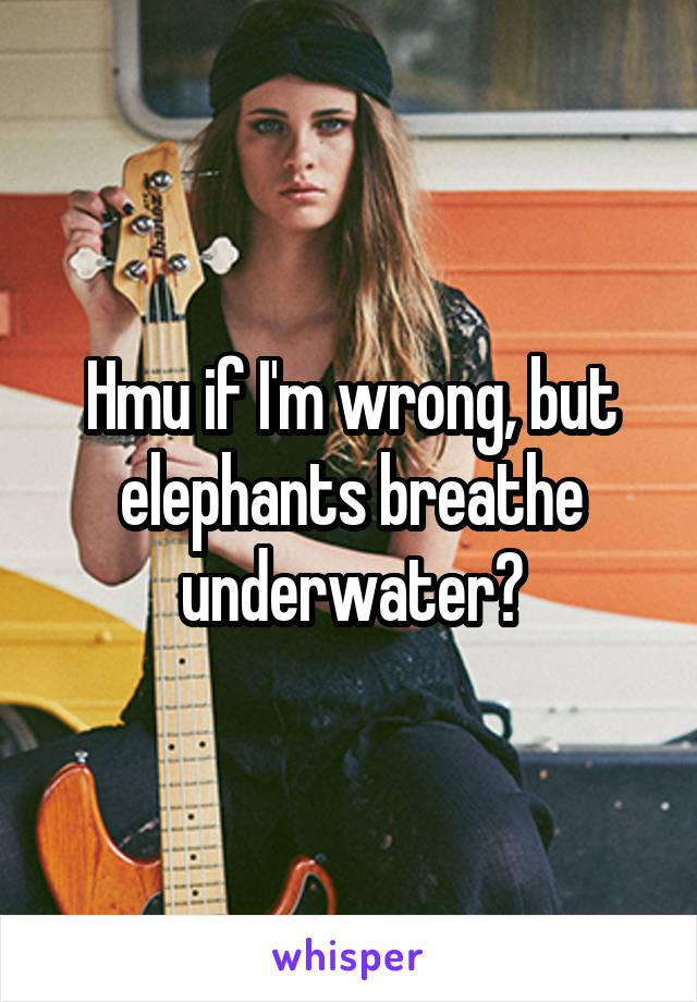 Hmu if I'm wrong, but elephants breathe underwater?