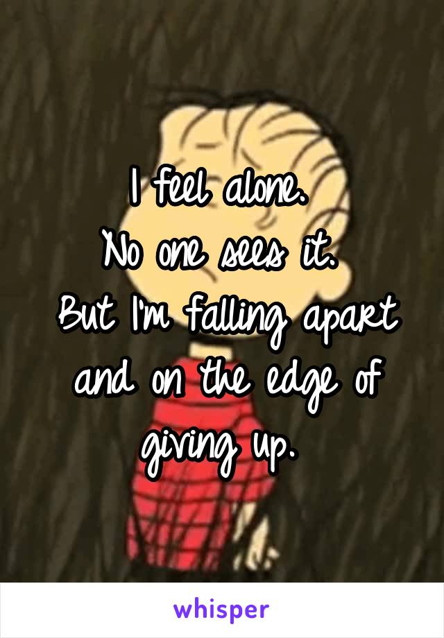 I feel alone.  No one sees it.  But I'm falling apart and on the edge of giving up.