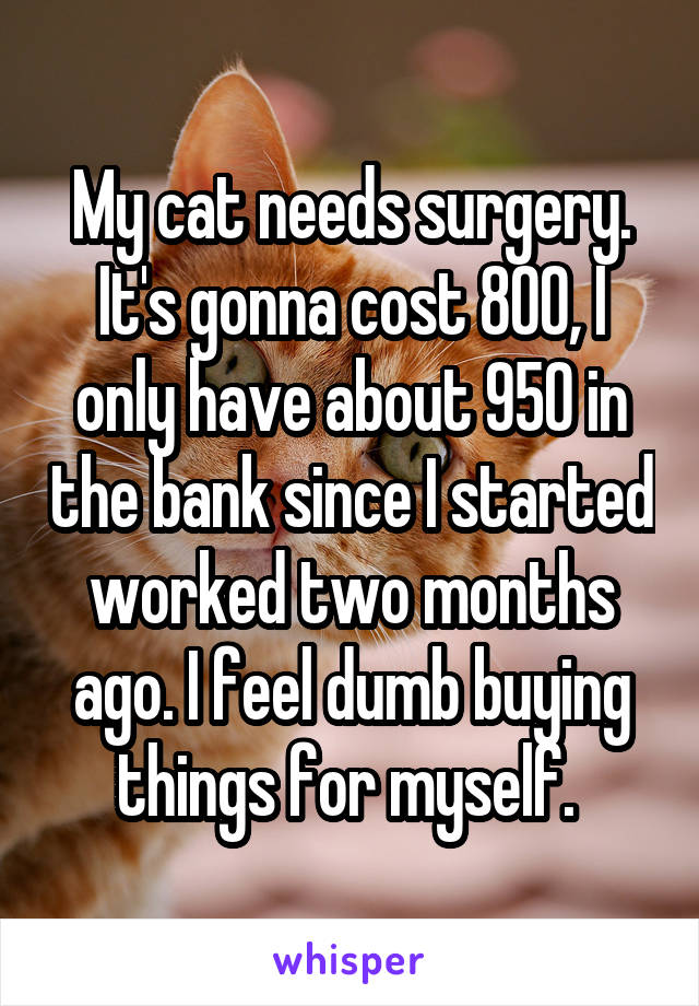 My cat needs surgery. It's gonna cost 800, I only have about 950 in the bank since I started worked two months ago. I feel dumb buying things for myself.
