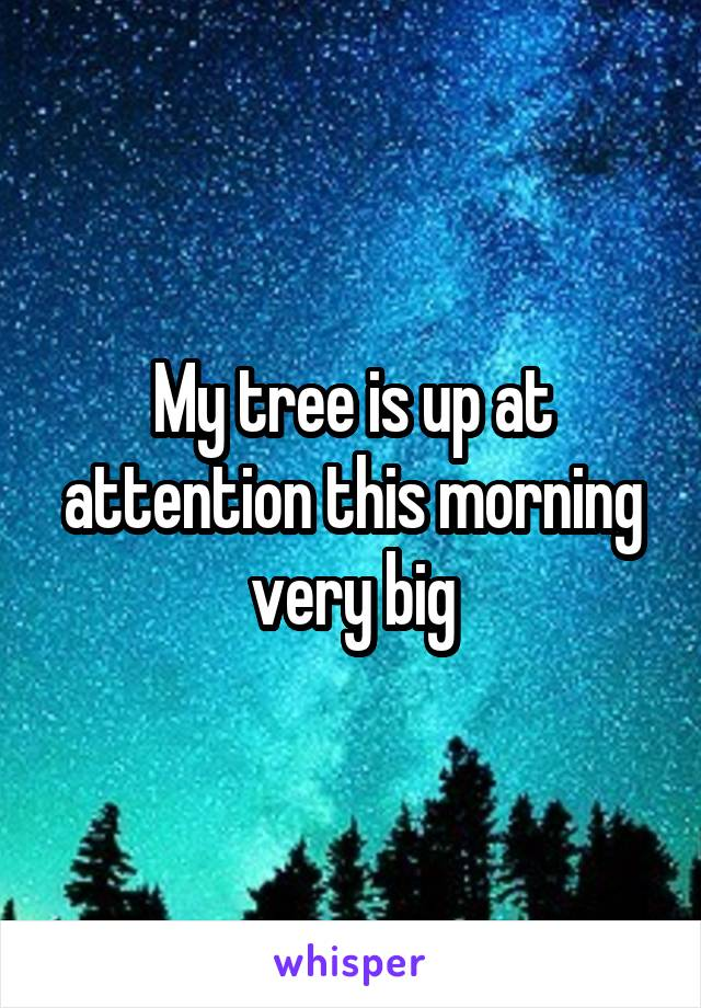 My tree is up at attention this morning very big
