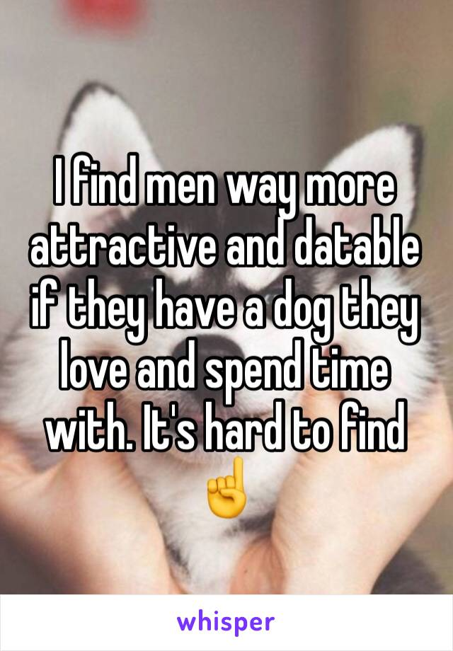 I find men way more attractive and datable if they have a dog they love and spend time with. It's hard to find ☝️