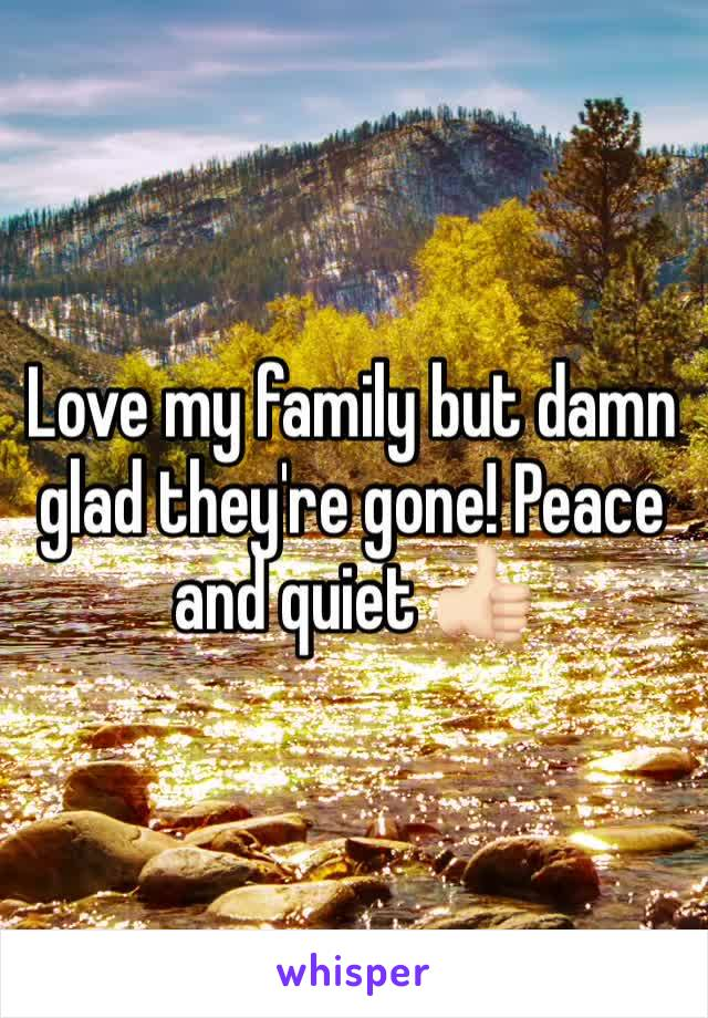 Love my family but damn glad they're gone! Peace and quiet 👍🏻