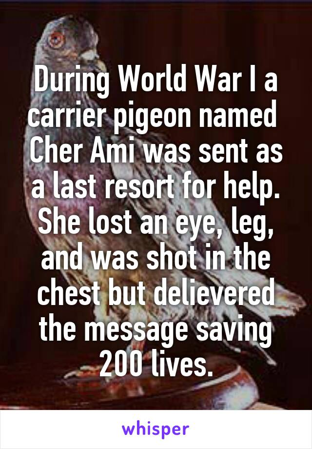 During World War I a carrier pigeon named  Cher Ami was sent as a last resort for help. She lost an eye, leg, and was shot in the chest but delievered the message saving 200 lives.