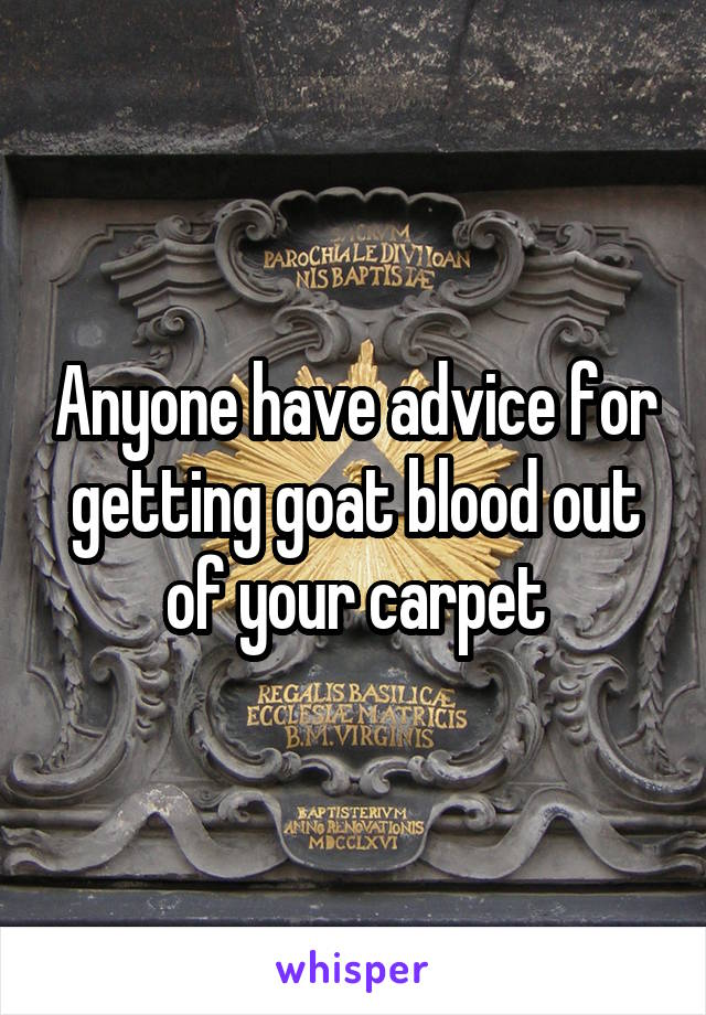 Anyone have advice for getting goat blood out of your carpet
