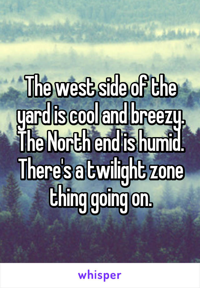 The west side of the yard is cool and breezy. The North end is humid. There's a twilight zone thing going on.