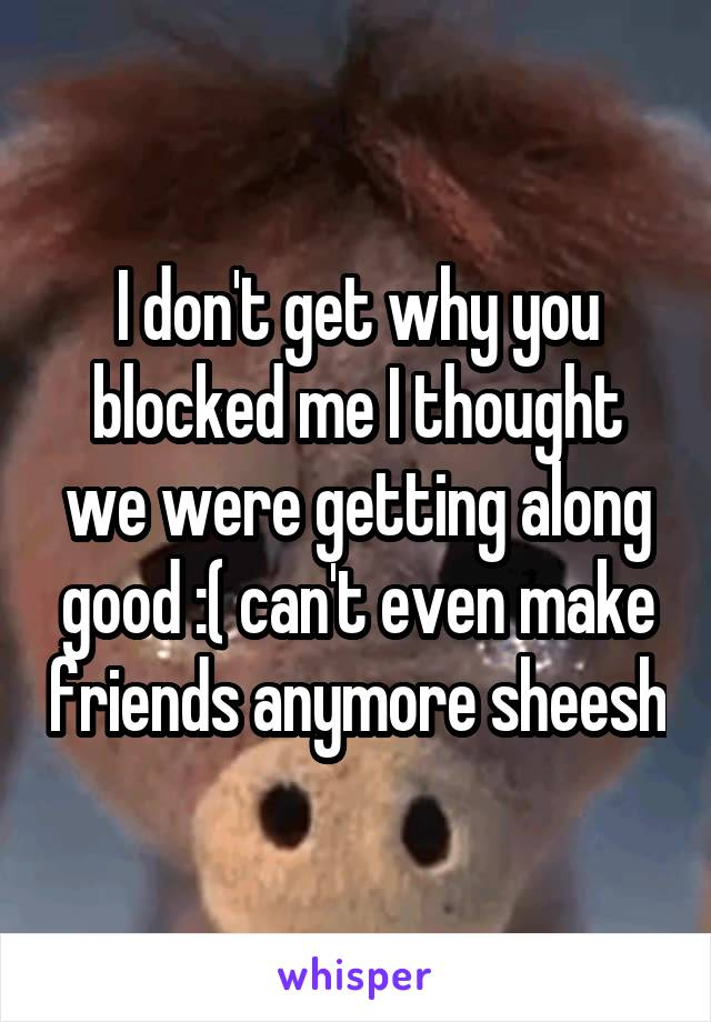 I don't get why you blocked me I thought we were getting along good :( can't even make friends anymore sheesh