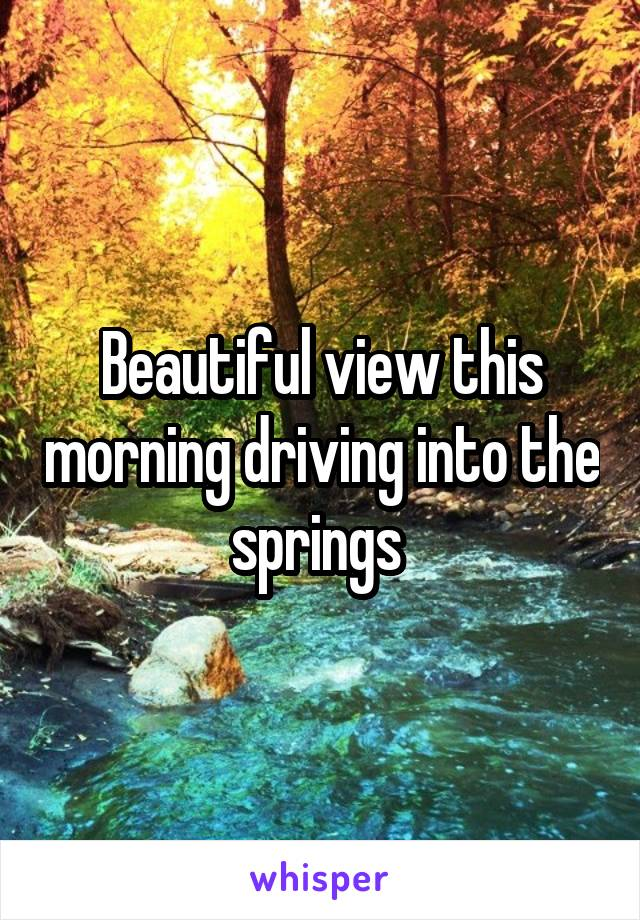 Beautiful view this morning driving into the springs