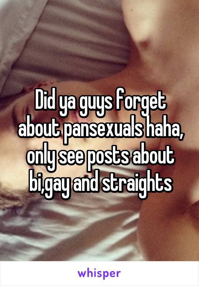 Did ya guys forget about pansexuals haha, only see posts about bi,gay and straights