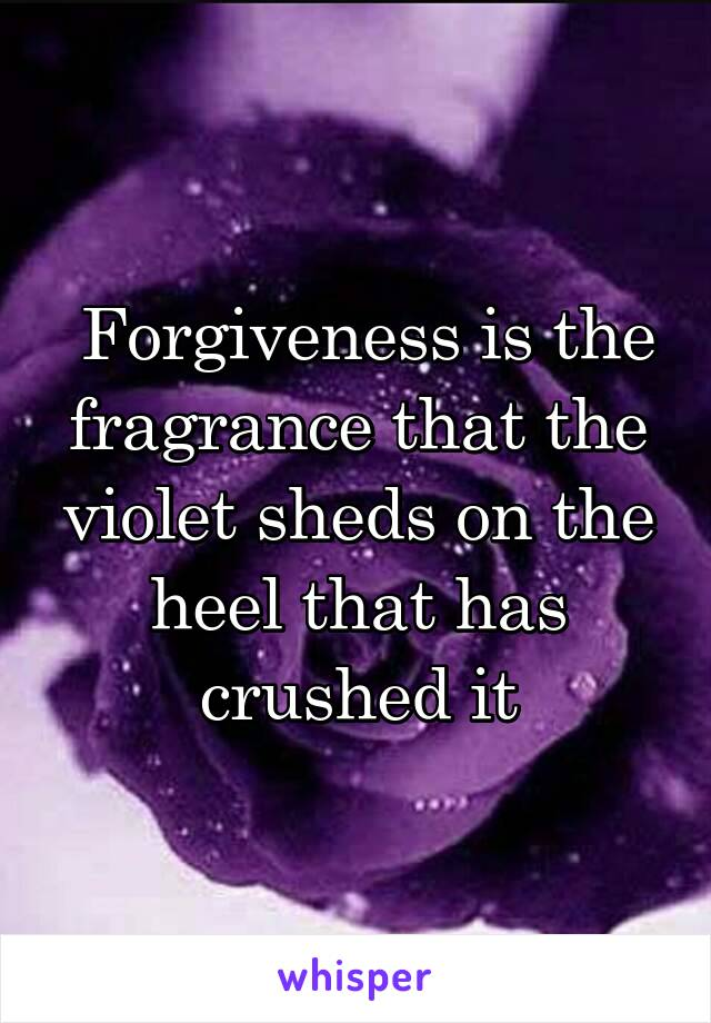 Forgiveness is the fragrance that the violet sheds on the heel that has crushed it