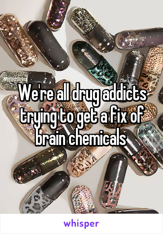We're all drug addicts trying to get a fix of brain chemicals