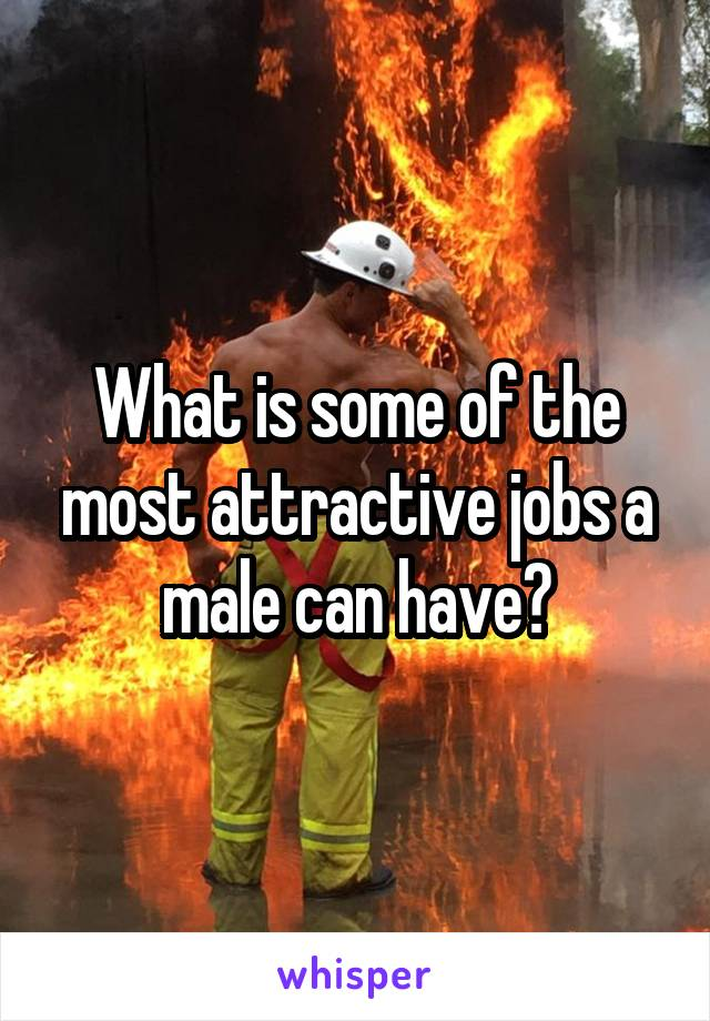 What is some of the most attractive jobs a male can have?