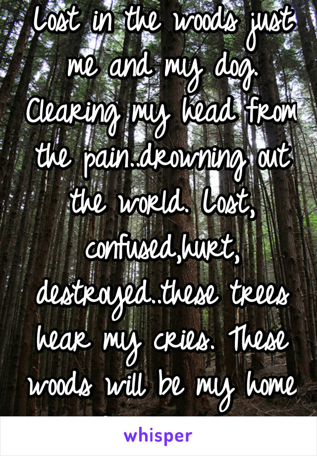 Lost in the woods just me and my dog. Clearing my head from the pain..drowning out the world. Lost, confused,hurt, destroyed..these trees hear my cries. These woods will be my home for tonight.