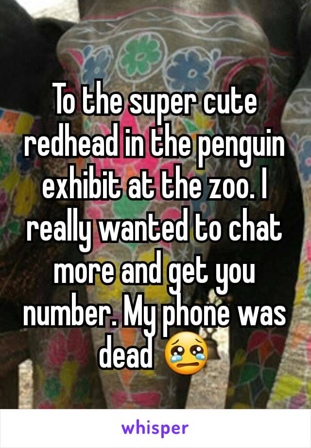 To the super cute redhead in the penguin exhibit at the zoo. I really wanted to chat more and get you number. My phone was dead 😢
