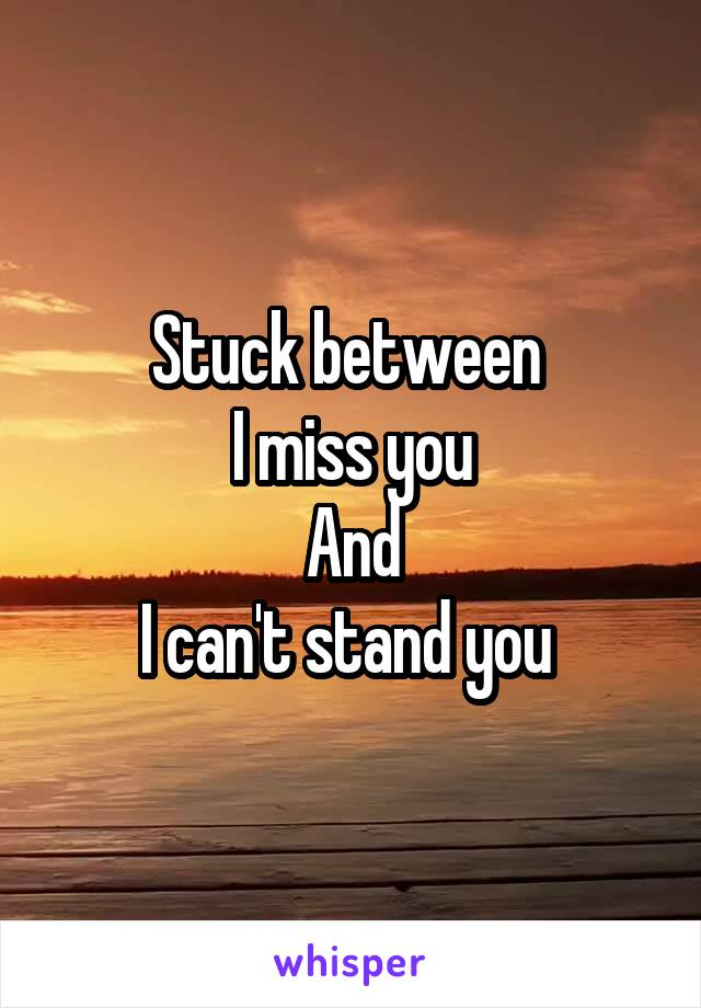 Stuck between  I miss you And I can't stand you