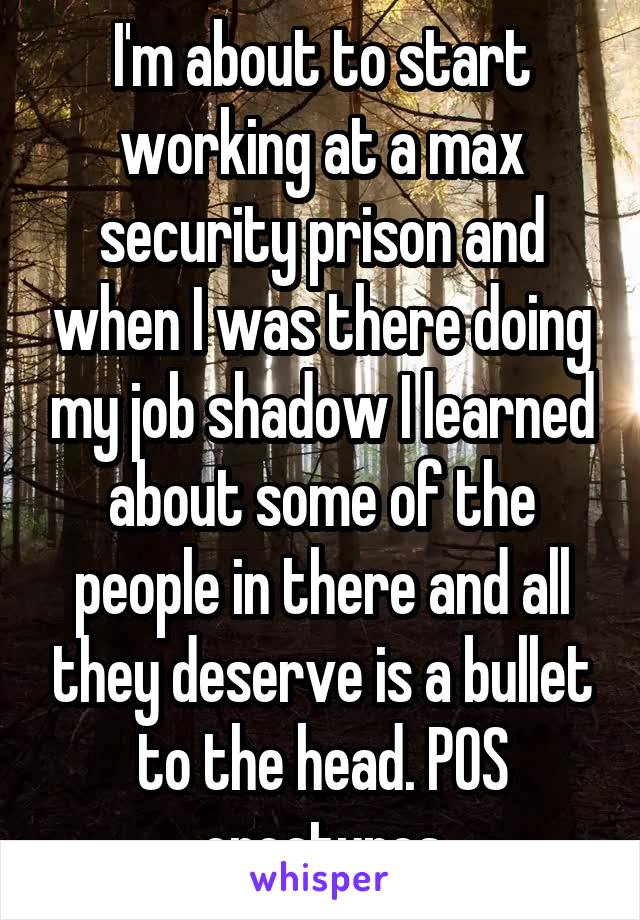 I'm about to start working at a max security prison and when I was there doing my job shadow I learned about some of the people in there and all they deserve is a bullet to the head. POS creatures