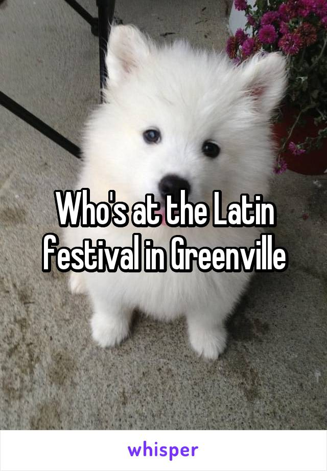 Who's at the Latin festival in Greenville