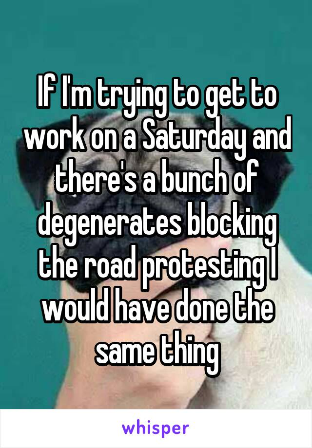 If I'm trying to get to work on a Saturday and there's a bunch of degenerates blocking the road protesting I would have done the same thing