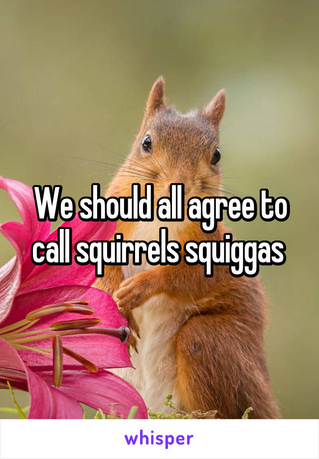 We should all agree to call squirrels squiggas