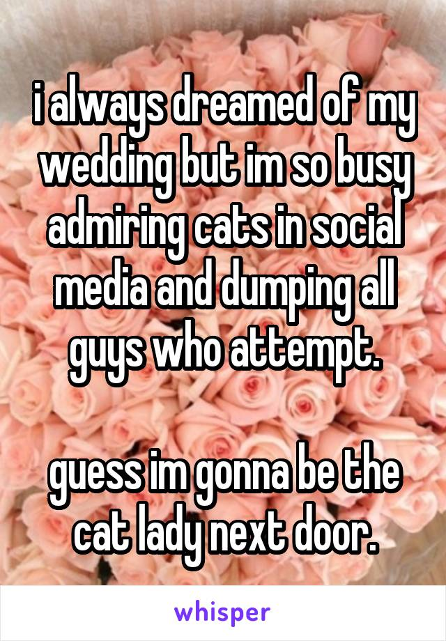 i always dreamed of my wedding but im so busy admiring cats in social media and dumping all guys who attempt.  guess im gonna be the cat lady next door.
