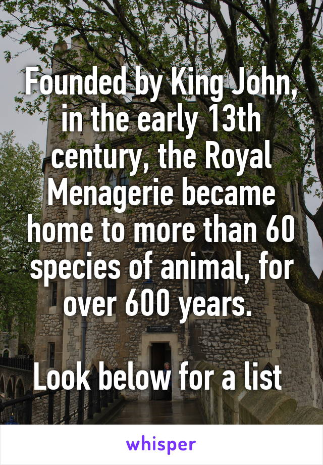Founded by King John, in the early 13th century, the Royal Menagerie became home to more than 60 species of animal, for over 600 years.   Look below for a list