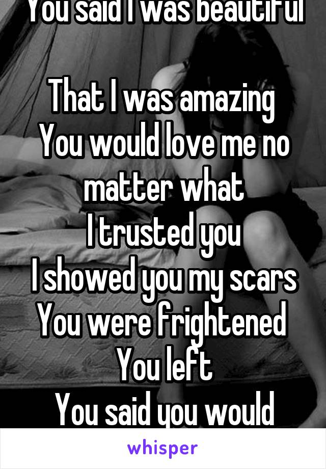 You said I was beautiful  That I was amazing  You would love me no matter what I trusted you I showed you my scars You were frightened  You left You said you would never leave