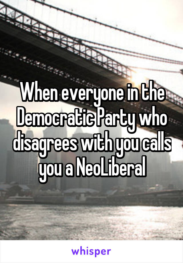 When everyone in the Democratic Party who disagrees with you calls you a NeoLiberal