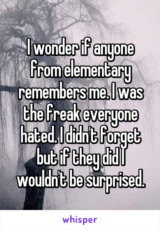 I wonder if anyone from elementary remembers me. I was the freak everyone hated. I didn't forget but if they did I wouldn't be surprised.