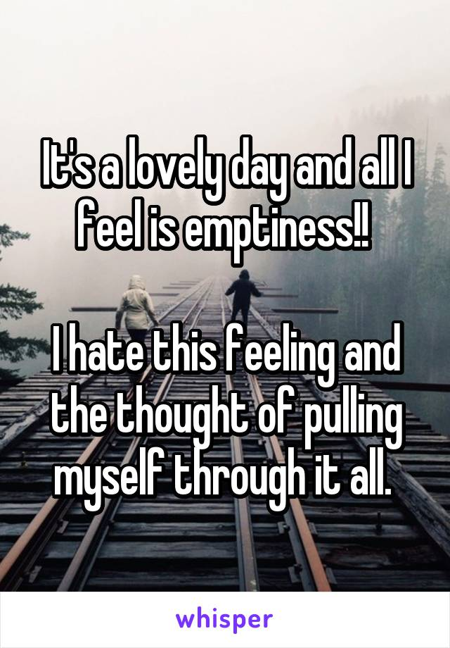 It's a lovely day and all I feel is emptiness!!   I hate this feeling and the thought of pulling myself through it all.