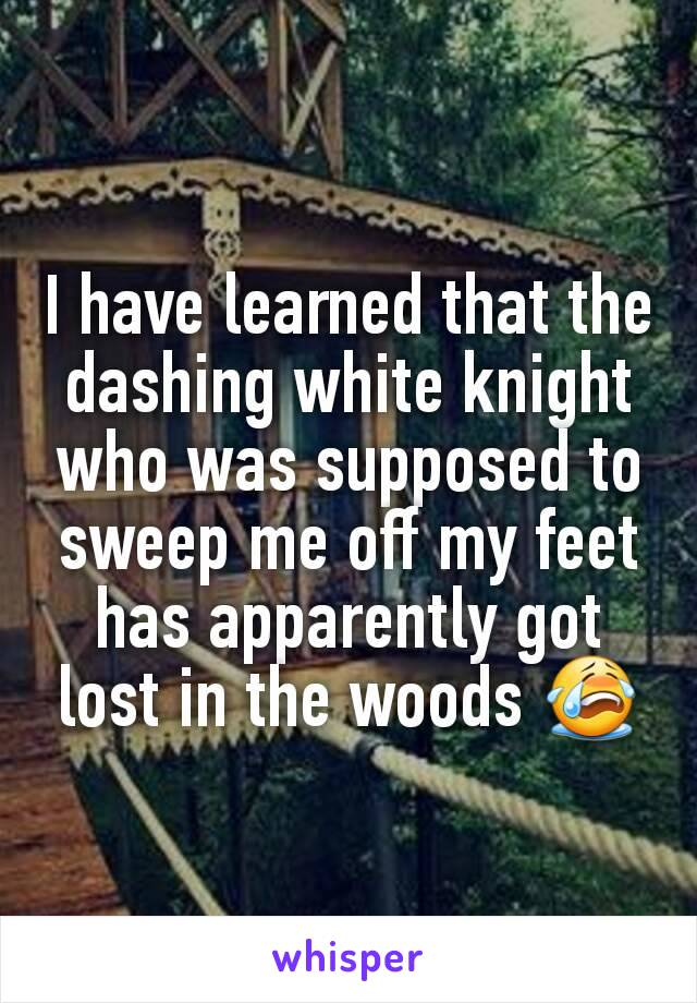 I have learned that the dashing white knight who was supposed to sweep me off my feet has apparently got lost in the woods 😭