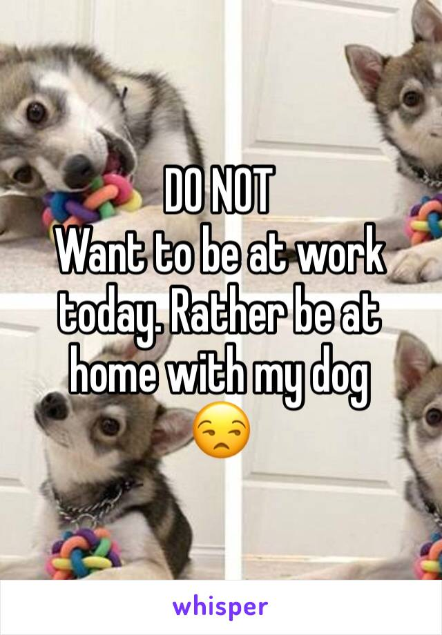 DO NOT  Want to be at work today. Rather be at home with my dog  😒