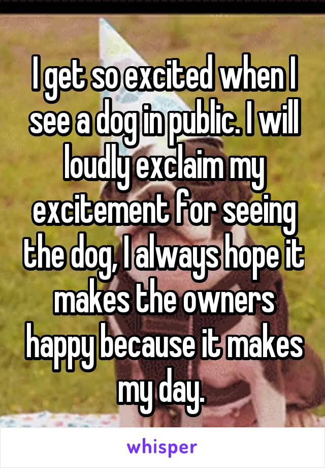 I get so excited when I see a dog in public. I will loudly exclaim my excitement for seeing the dog, I always hope it makes the owners happy because it makes my day.