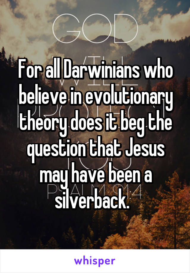 For all Darwinians who believe in evolutionary theory does it beg the question that Jesus may have been a silverback.