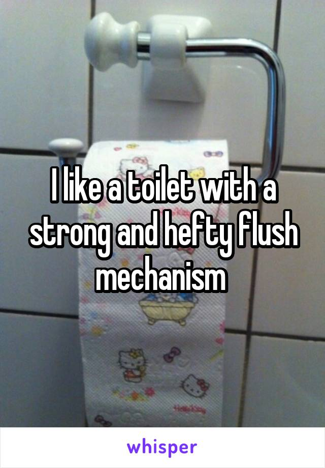 I like a toilet with a strong and hefty flush mechanism