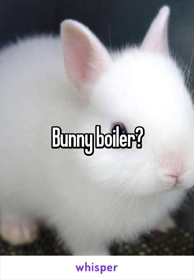 Bunny boiler?