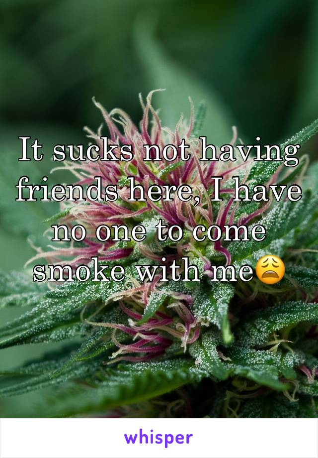 It sucks not having friends here, I have no one to come smoke with me😩