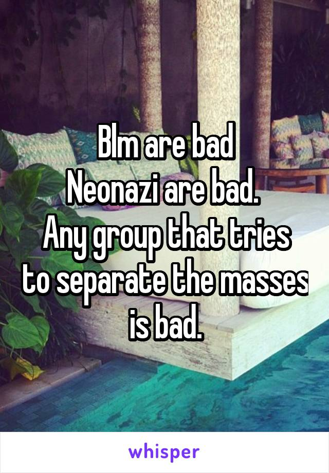 Blm are bad Neonazi are bad.  Any group that tries to separate the masses is bad.