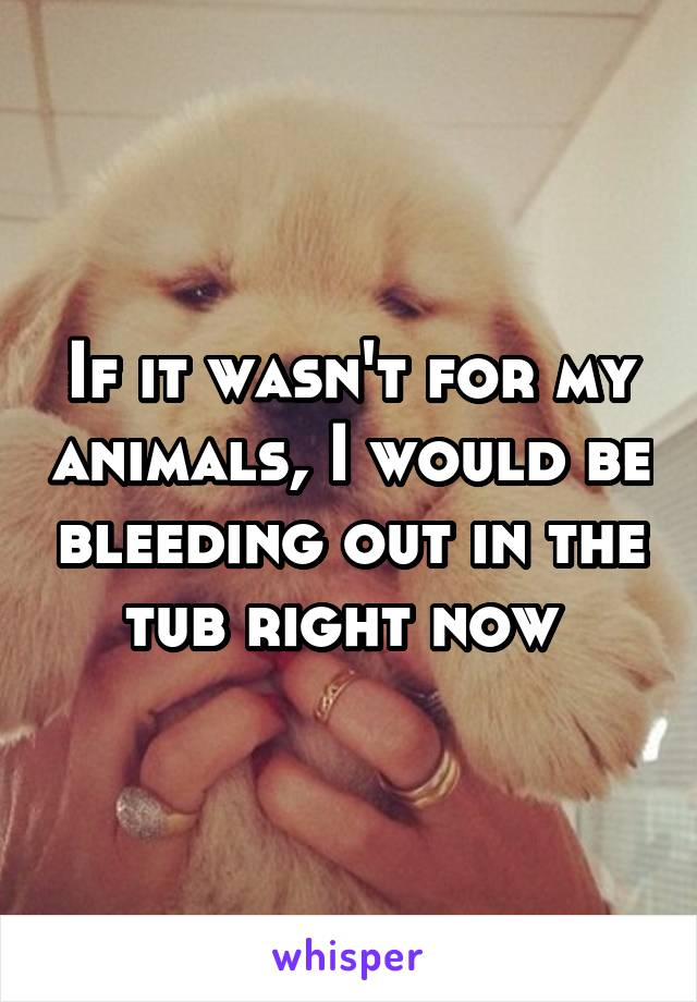 If it wasn't for my animals, I would be bleeding out in the tub right now