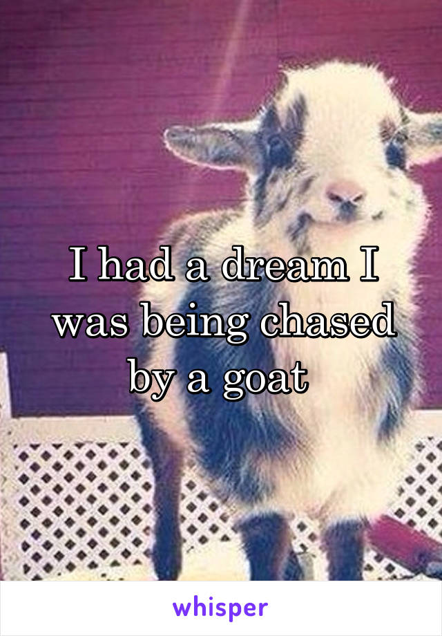 I had a dream I was being chased by a goat