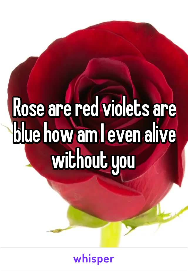 Rose are red violets are blue how am I even alive without you