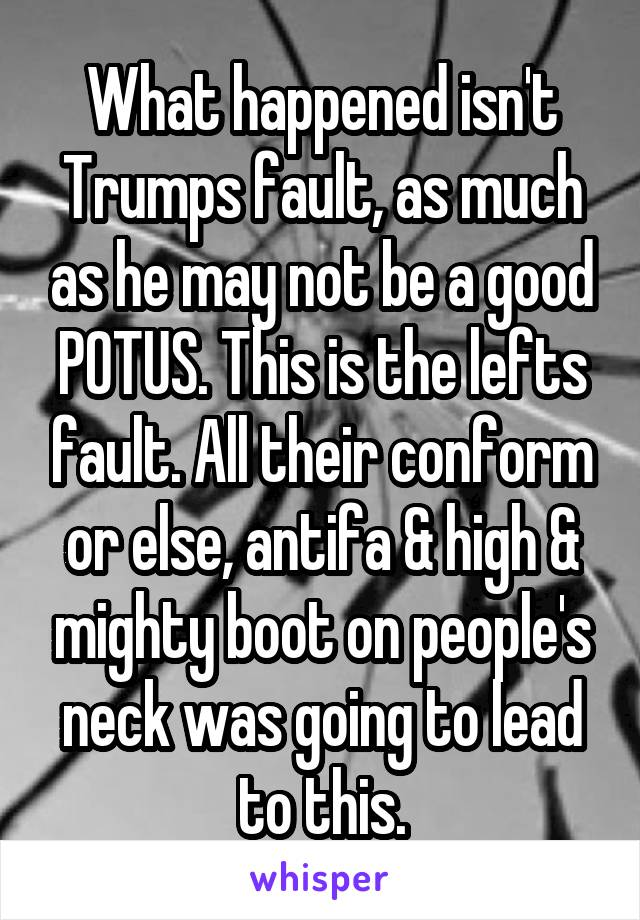 What happened isn't Trumps fault, as much as he may not be a good POTUS. This is the lefts fault. All their conform or else, antifa & high & mighty boot on people's neck was going to lead to this.
