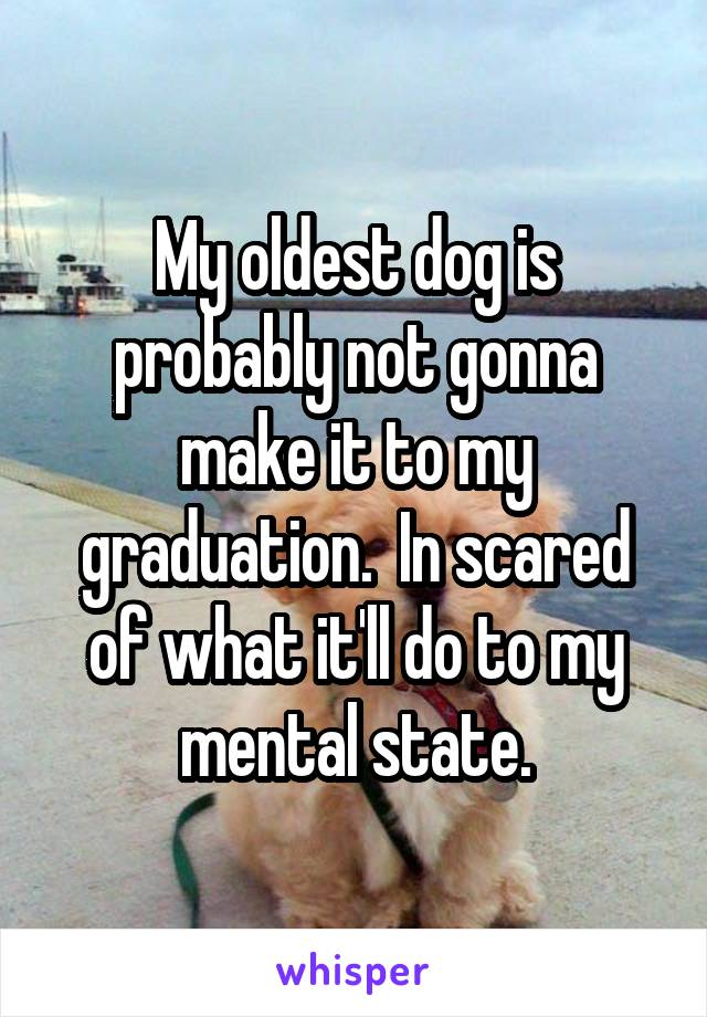 My oldest dog is probably not gonna make it to my graduation.  In scared of what it'll do to my mental state.