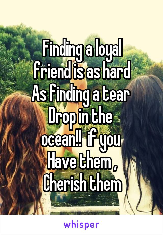Finding a loyal  friend is as hard  As finding a tear  Drop in the  ocean!!  if you  Have them , Cherish them