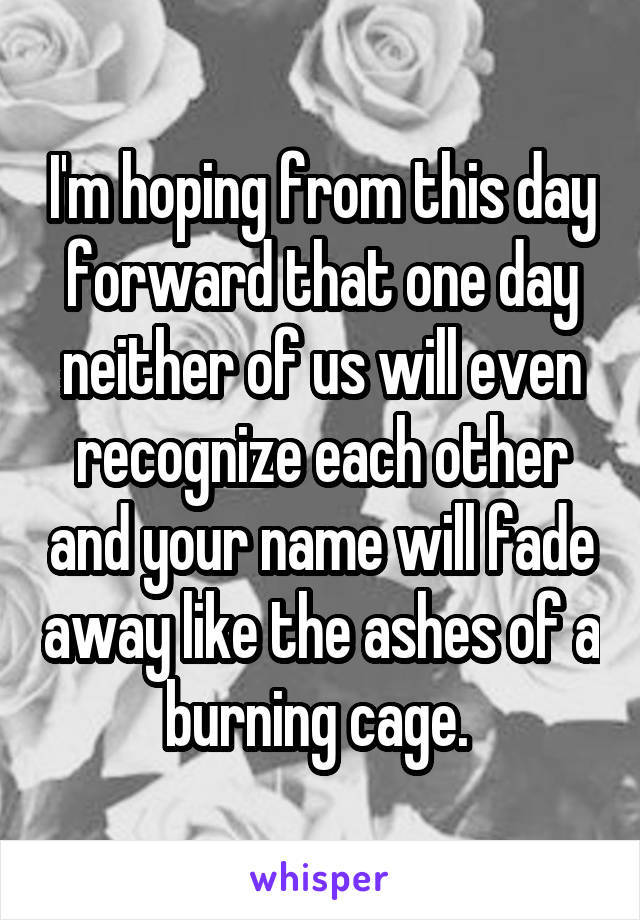 I'm hoping from this day forward that one day neither of us will even recognize each other and your name will fade away like the ashes of a burning cage.