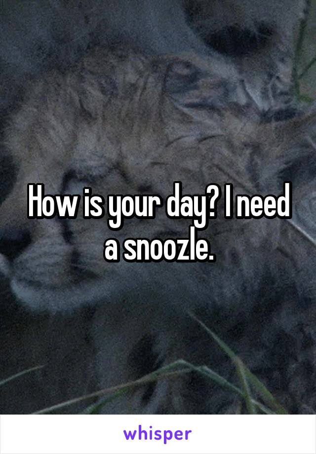 How is your day? I need a snoozle.