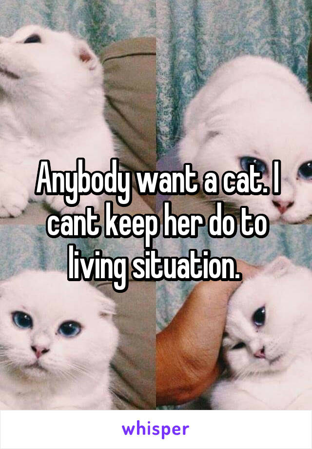 Anybody want a cat. I cant keep her do to living situation.