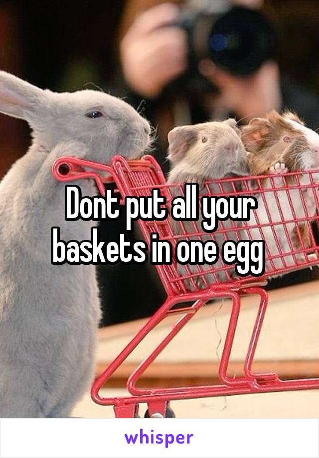 Dont put all your baskets in one egg