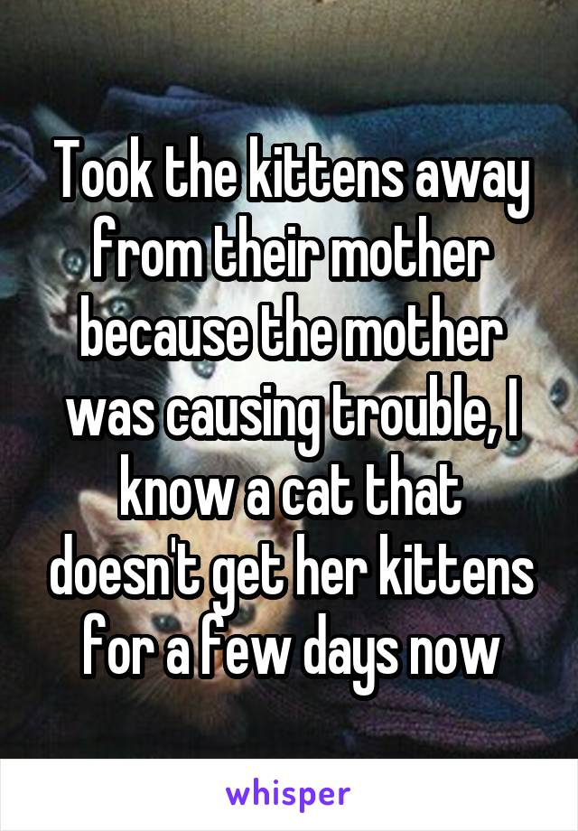 Took the kittens away from their mother because the mother was causing trouble, I know a cat that doesn't get her kittens for a few days now